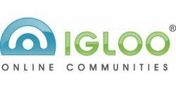 http://intelligencepartner.com/wp-content/uploads/2012/02/7732_igloo_software_255255255.jpg