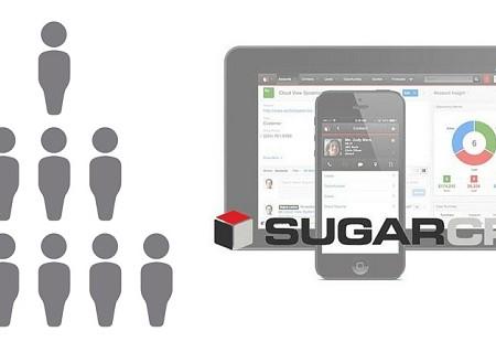 Usuarios de Sugar: tipos.