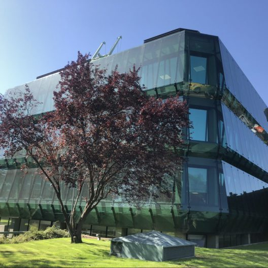 Oficinas Madrid Intelligence Partner